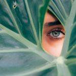 Teinture cils & sourcils